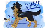 Comet Reference by Kirara003