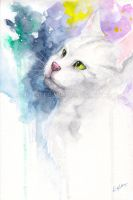 watercolor cat #3 by leamatte