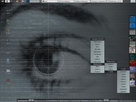Eye of the code by serVI
