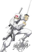 StormShadow by Gaibhre