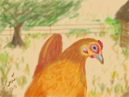 Arkansas Hen by shaharw