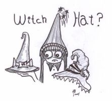 Witch Hat? by WoolSocks