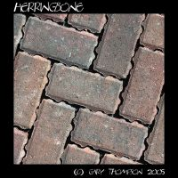 Herringbone by SushiGuru by scottish