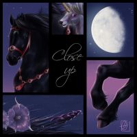Moonlight Escapade - Details by cerona