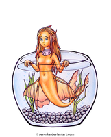 Do not keep them in a fishbowl by Severka