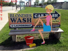 Blondie's... er, Caitlin's... Car Wash? by daanton