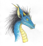 Blue Dragon by DraculeaRiccy