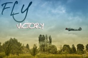 Fly to Victory by FilipR8