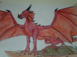 Red Dragon by Buggie1112