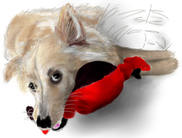 Orla with her Christmas chew toy by EvilAnemone