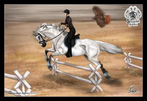 BSTC - Stjerne, Show Jumping by Baringa-of-the-Wind