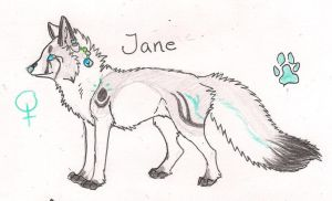 Ref sheet for Jane by Crazywolfs