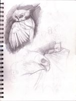 Sketchbook Vol.23 - p033 by theory-of-everything