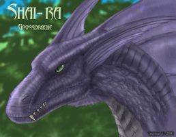 Shai Ra the Great Dragon by Tacimur
