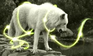 Wolf lightening by AshleySmith