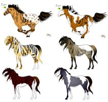 Tiger Horse Adopts by Jackie3