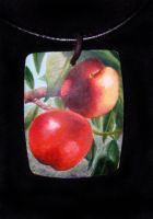 nectarines for the little girl by roberti
