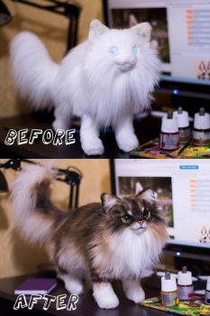 Before and after. Cat Commission by MalinaToys