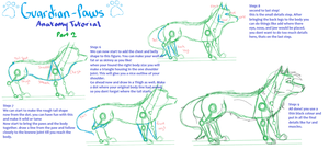 Anatomy Tutorial part 2 by Guardian-paws