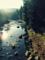 Czech nature by JaneJanette