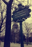 Paris by Wrock-n-Wroll