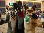 fursuit buddies by Kium