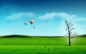 balloons trees by ameeth1990