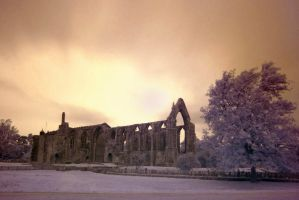 Bolton Abbey in infrared by zeelong