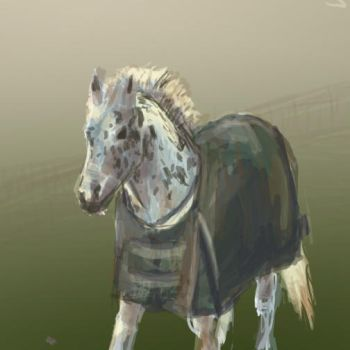 Horse Commission by Kunsthaus