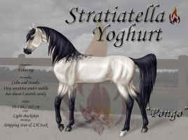 GFS Stratiatella Yoghurt by FlareAndIcicle