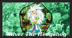 Archie Silver The Hedgehog by DeathGoddess1995