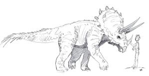 Triceratops by neotonic