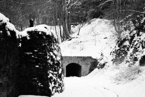 Tunnel... by 13love88