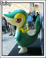 A wild snivy appeared by BlueWolfCheetah