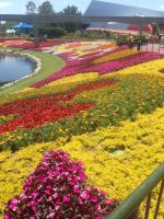 Epcot's Flowers by Simpsonsfanatic33
