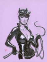Catwoman con drawing by MichaelDooney