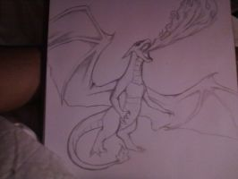 Charizard Sketch by Desmant