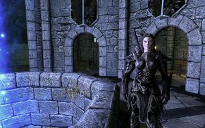 Skyrim Lydia in Ebony Winter by micro5797
