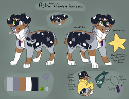 Astra Ref by L0S3RD0G