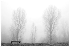 Fog by RR-Photoart