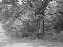 Tire Swing by AiPFilmMaker