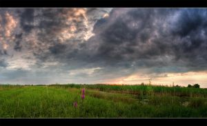 Goersloevsaan HDR Pan by Dreammastr