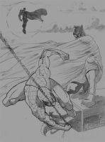 Batmanvsspiderman by androsm