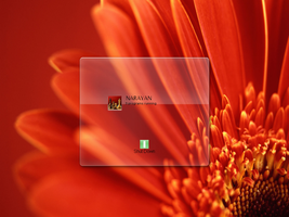 Flower Logon XP by dncube