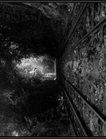Deep Forest Railway by Kell-core
