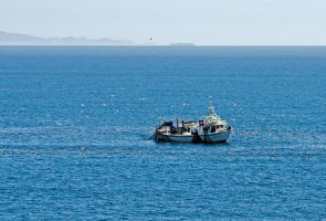 Seagulls over a fishing boat by agelisgeo