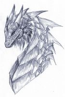 Dragon Portrait by raerae