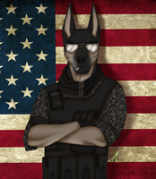 Americans Best Soldier by VeroWolfthegreenfang