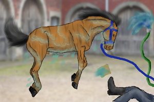 Horse Wash-Fight Club by patchesofheaven74
