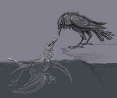 water crow and normal crow by flowerewolf